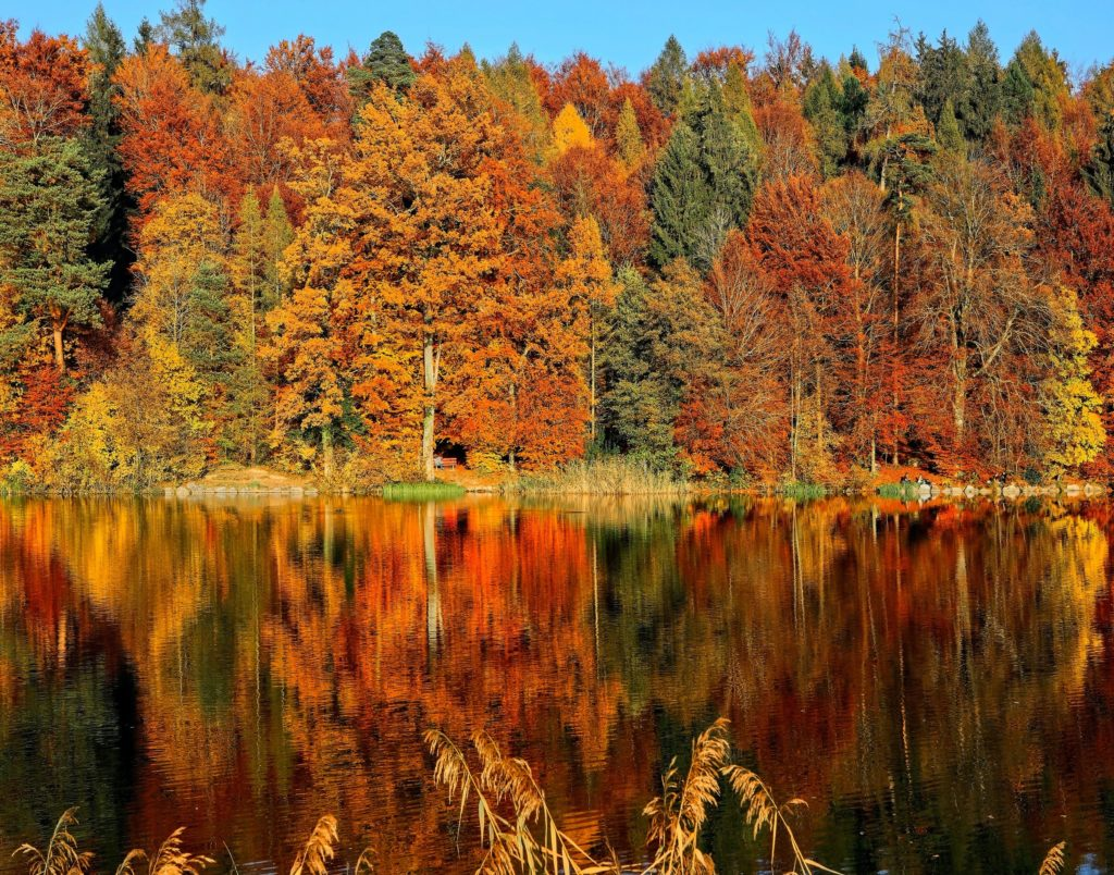 What is Autumn Equinox impact on your life and business?